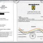 Specimen certificat de competente profesionale APOSTILAT